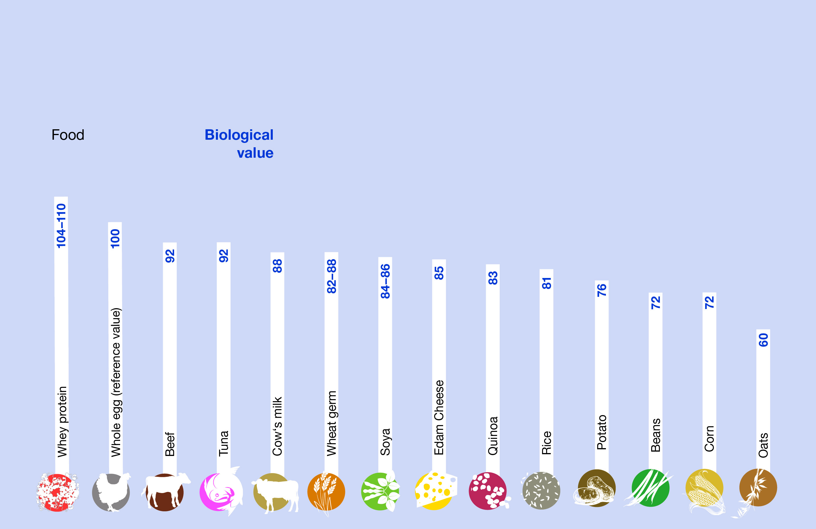 Chart biological value of foods